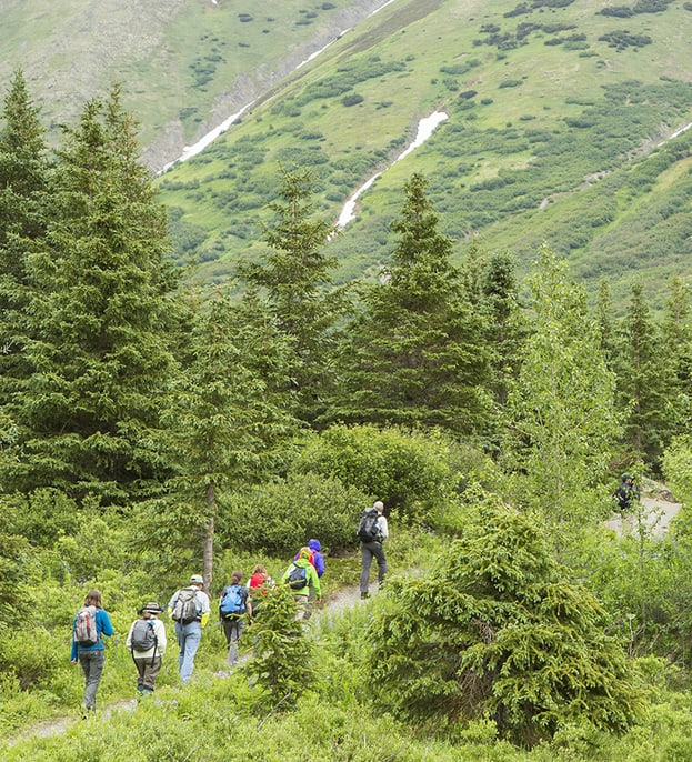 A Group of Hikers in Alaska